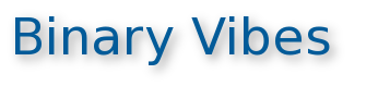 Binary Vibes Information Technologies Pvt. Ltd.